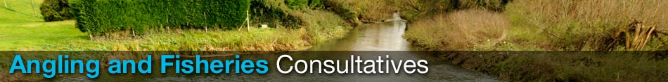 consultative headers